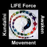 LIFE Force  Movement for Men March 21 2013  7:00pm to 8:30 pm Awaken Studio Toronto www.phillipcoupal.ca